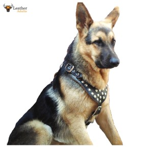 Padded Leather Dog Harness VERY HIGH QUALITY Studded Medium to Large Dogs